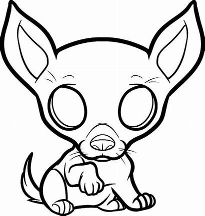 Coloring Pages Puppy Dog Chihuahua Netart Female