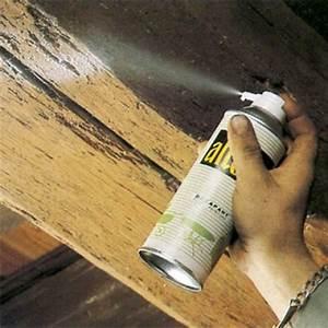 Peindre Des Poutres Anciennes : comment rnover une vieille maison une lampe souder permet ~ Premium-room.com Idées de Décoration