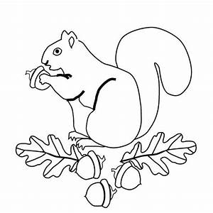 23 best Acorns & Squirrels Embroidery Patterns images on ...