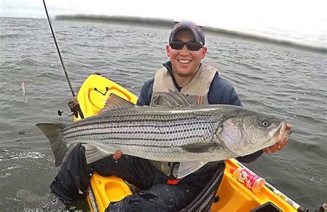 Big Bass Moving In  Weekend Kayak Report  My Fishing