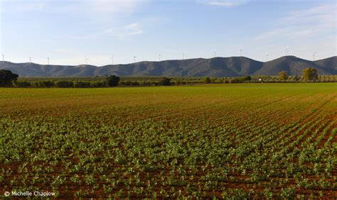 fertile plains andalucia malaga chaplow piedra fuente michelle near environment