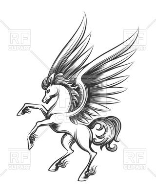 winged horse engraving hand drawn pegasus  flying