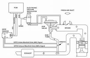 93 Dpfe Sensor Question - Ford Forums