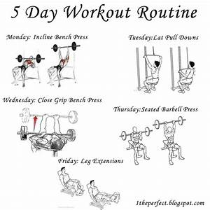 5 Day Bodybuilding Workout Schedule With Images