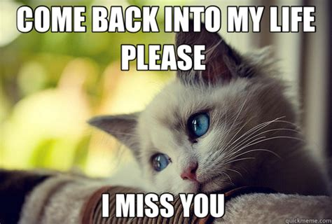 Come Back To Me Meme - come back into my life please i miss you first world problems cat quickmeme