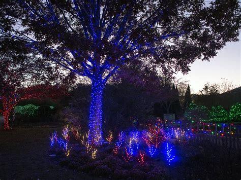 lights in asheville nc asheville s nc arboretum festive lights display opens nov 22