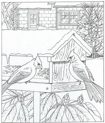 Coloring Natuur Kleurplaat Ausmalbilder Fun Kleurplaten Bird