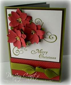 Christmas Star Beautyful Poinsettia Plant and how to
