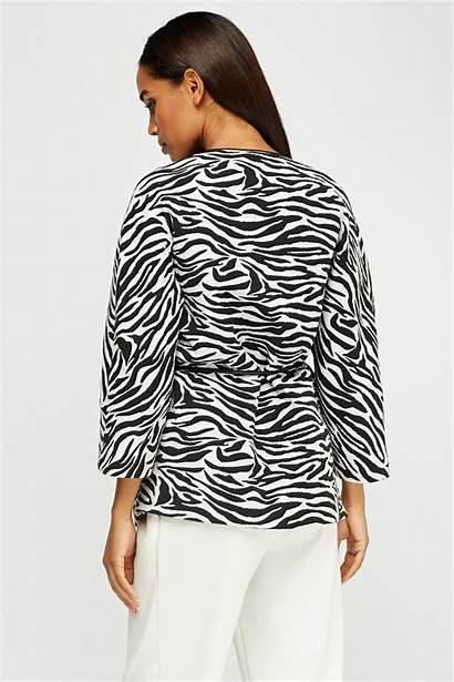 Zebra Zoom