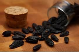 File:Tonka Beans.jpg - Wikipedia