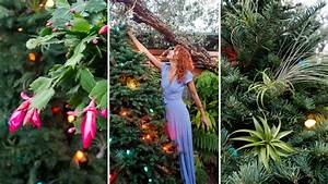 Ornamental Garden: Trimming the Tree, an Air Plant Angel