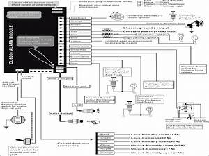 Car Alarm Wiring Diagram Sample