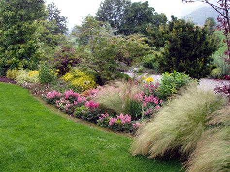 Dettaglio Piante  Il Giardino  Creazione E Manutenzione