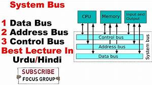 System Bus And Its Types