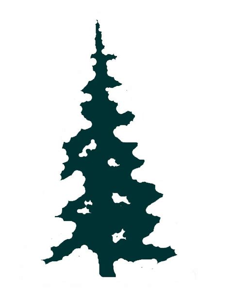 huge collection  evergreen tree silhouette