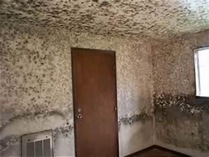 Feuchtigkeit In Der Wand : schimmelpilz schimmelgutachten schimmelgutachter bausachverst ndiger schimmelprobleme ~ Sanjose-hotels-ca.com Haus und Dekorationen