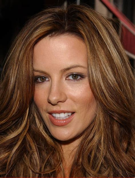 warm brown hair color 1000 ideas about ash highlights on ash