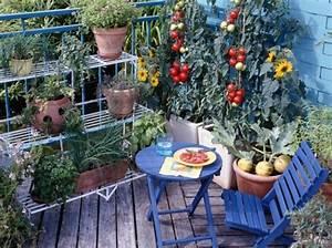 Jardin Et Balcon : d co balcons terrasses et jardins ~ Premium-room.com Idées de Décoration