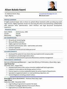 Sample cv accounting officer choice image certificate for Exceptional resume paper