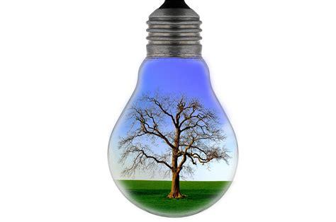 bulb  stock photo public domain pictures
