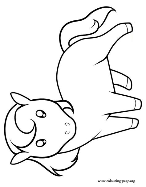 horses  cute  horse coloring page