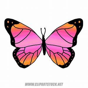 Flying Butterfly Cartoon | Clipart Panda - Free Clipart Images