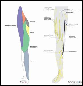 femoral nerve pain treatment