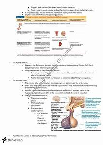 Anatomy  U0026 Physiology Study Guide With Review Questions