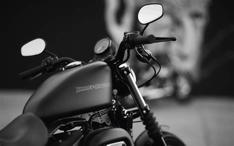 harley davidson wallpapers  background pictures