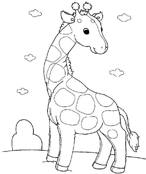 baby giraffe coloring pages  kids bing images zoo