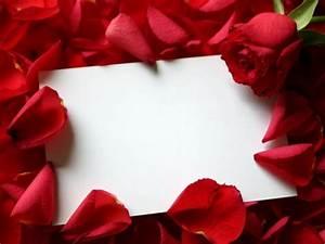 Wallpaper rose love