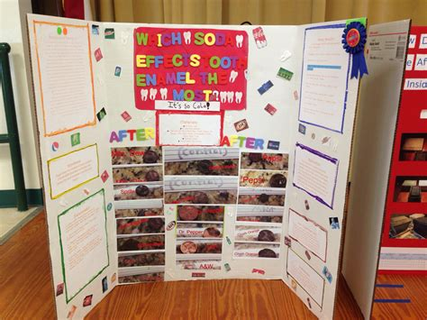 Science Fair Projects For 5th Graders Pine Trail S