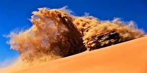 Best Abu Dhabi Desert Safari