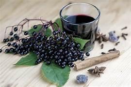Study Shows How 'Folk Medicine' Elderberries Are Effective Against The Flu Virus…