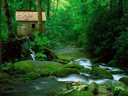 Stream Forest Cabin Landscape Nature Wallpapers Background