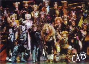 cats musical songs cats il musical