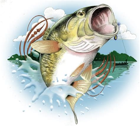 bass lake clipart   cliparts  images