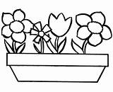 Coloring Flower Flowers Simple Printable sketch template