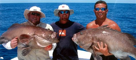 How Do Cobia Boats Rate by 22 Cobia