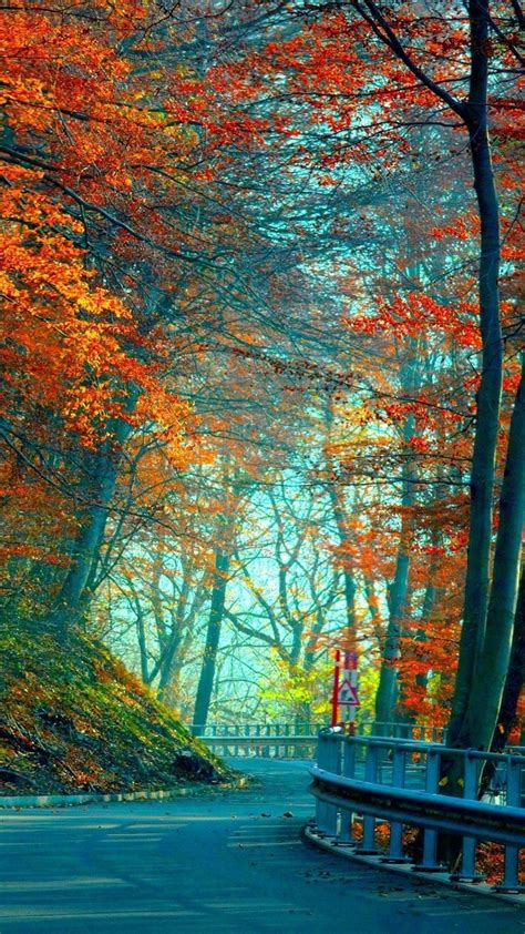 Fall Road Iphone Wallpaper by Autumn Hd Wallpapers For Pixel Xl Wallpapers Pictures