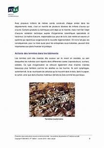 Produit Contre Les Termites : protection des constructions neuves contre les termites ~ Melissatoandfro.com Idées de Décoration