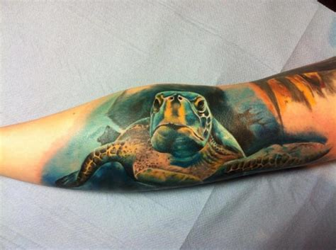 arm realistic turtle tattoo  restless soul tattoo