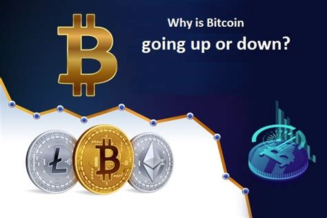 Why is bitcoin going down? Why is bitcoin going up or down? | Quicksquaddesk