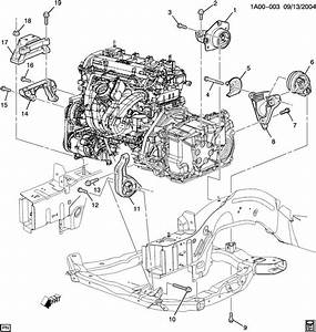 Motor  Trans Mount Identification