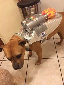 How to Make an Easy Astronaut Dog Costume - Snapguide
