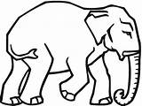 Elephant Coloring Pages Trunk Drawing Walking Getdrawings Coloringpages101 Animals sketch template