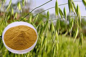 Can Avena Sativa Really Increase Your Testosterone And Sex Drive