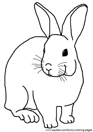 realistic rabbit coloring pages | BUNNIES | Pinterest
