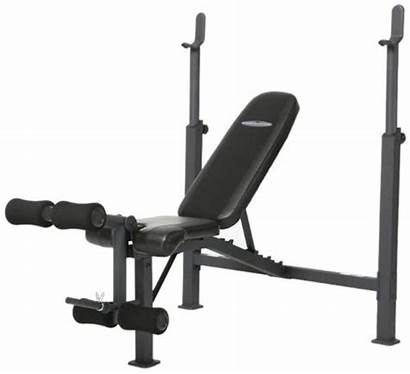 Bench Weight Olympic Competitor Cb Workout Gym