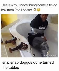 Snip Memes